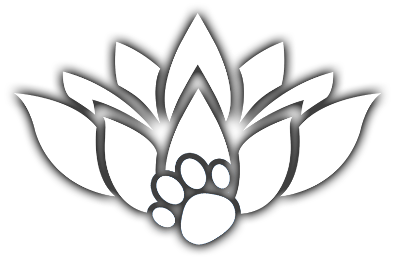 Tranquil Touch Healing